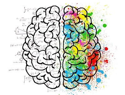 math lessons have a massive impact on the brain